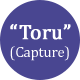 """Toru,"" or Capture"